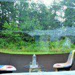 bulle-vue-forêt-nature